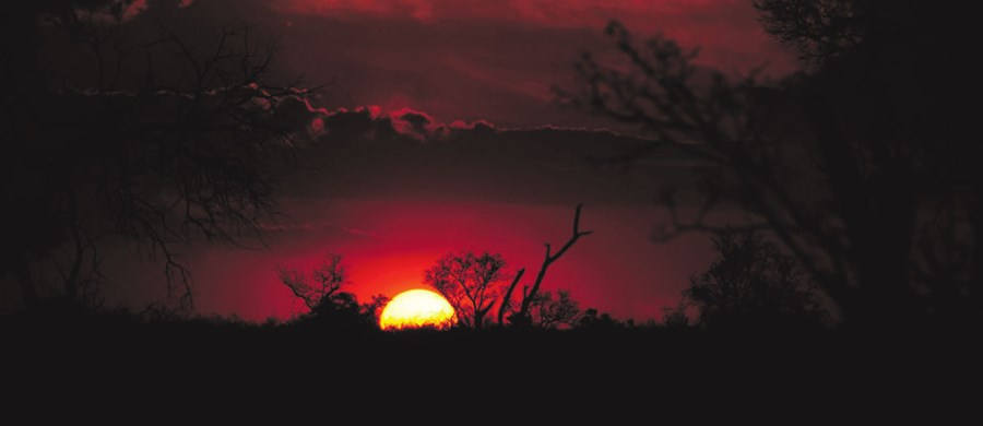 Sunsets in Madikwe are spectacular.